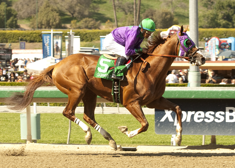 California Chrome a3 72
