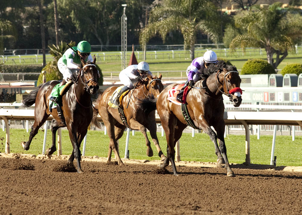 Reddam Racing's Nyquist and jockey Mario Gutierrez, right, draw away from Exaggerator, left, and Denman's Call (Flatvien Prat), inside center, to win the Grade II $200,000 San Vicente Stakes Monday, February 15, 2016 at Santa Anita Park, Arcadia CA.© BENOIT PHOTO