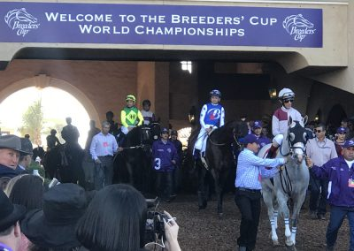 4 The Breeders Cup Sprint was just one of the fantastic races during the 2017 event at Del Mar. Here the entrants make their way from the paddock to the track